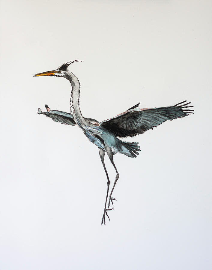 Great Blue Heron Acrylic Ink 1 by Rick Mosher