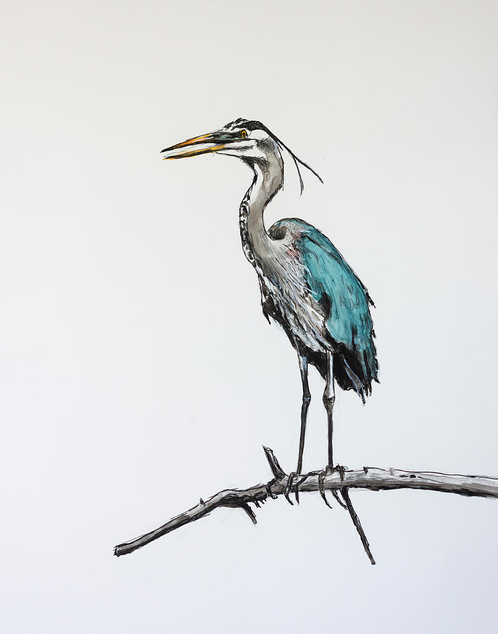 Great Blue Heron Acrylic Ink 2 by Rick Mosher