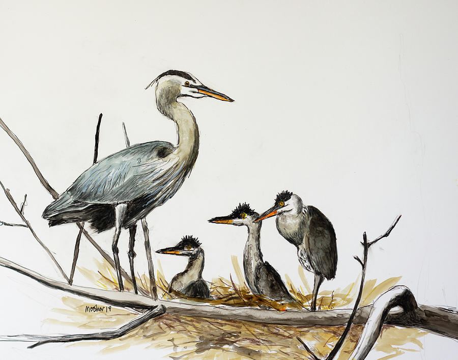 Great Blue Heron Acrylic Ink 3 by Rick Mosher