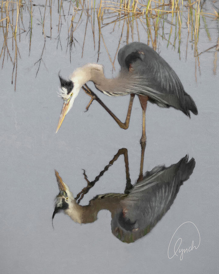 Great Blue Heron by Karen Lynch