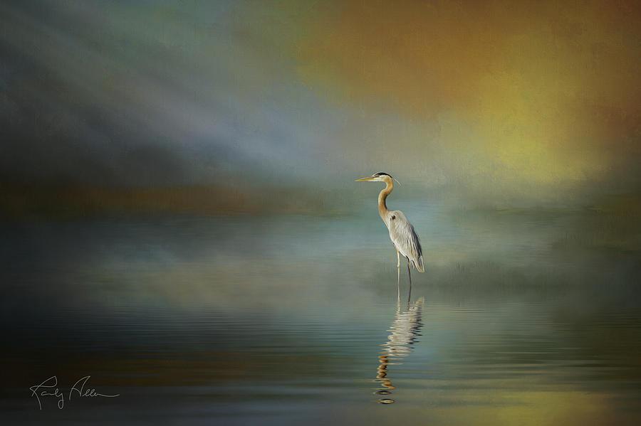 Great Blue Heron by Randall Allen