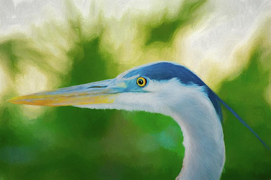 Great Blue by Michael Campbell