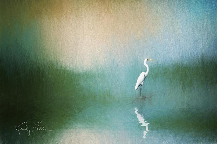 Great Egret by Randall Allen