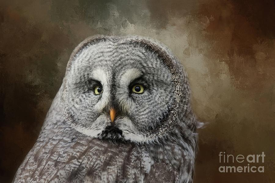 Great Grey Owl Portrait by Eva Lechner