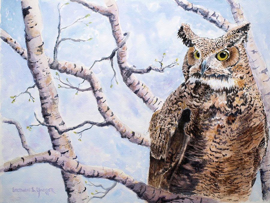 Owl Painting - Great Horned Owl by Stephen S Yaeger
