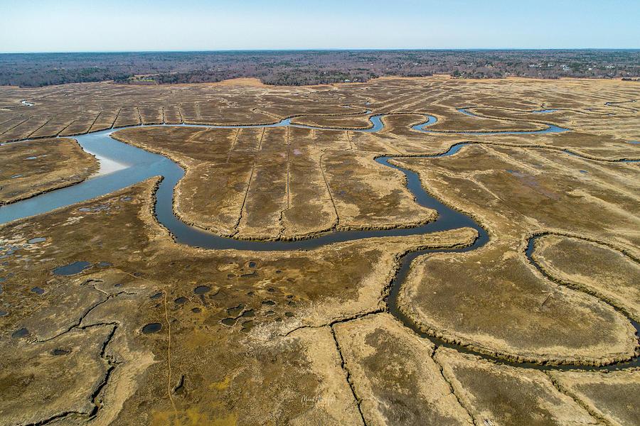 Great Marsh by Michael Hughes