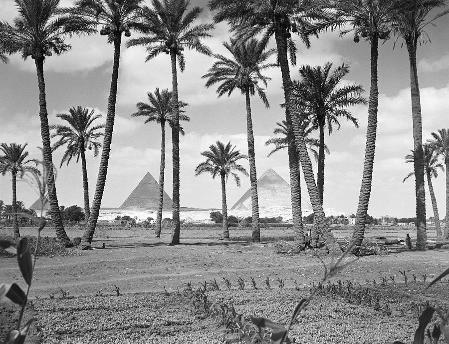 Great Pyramids Photograph by H. Armstrong Roberts