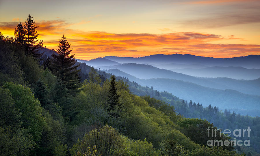 Newfound Gap Photograph - Great Smoky Mountains National Park by Dave Allen Photography