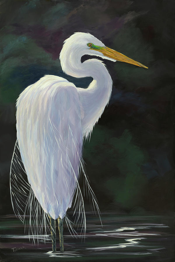 Great White Egret In Breeding Plumage Painting By Kathleen Tucker