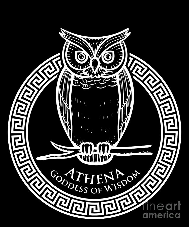 Greek Mythology Gift Ancient Greece History Lovers Of Athena Gods Goddesses Deities