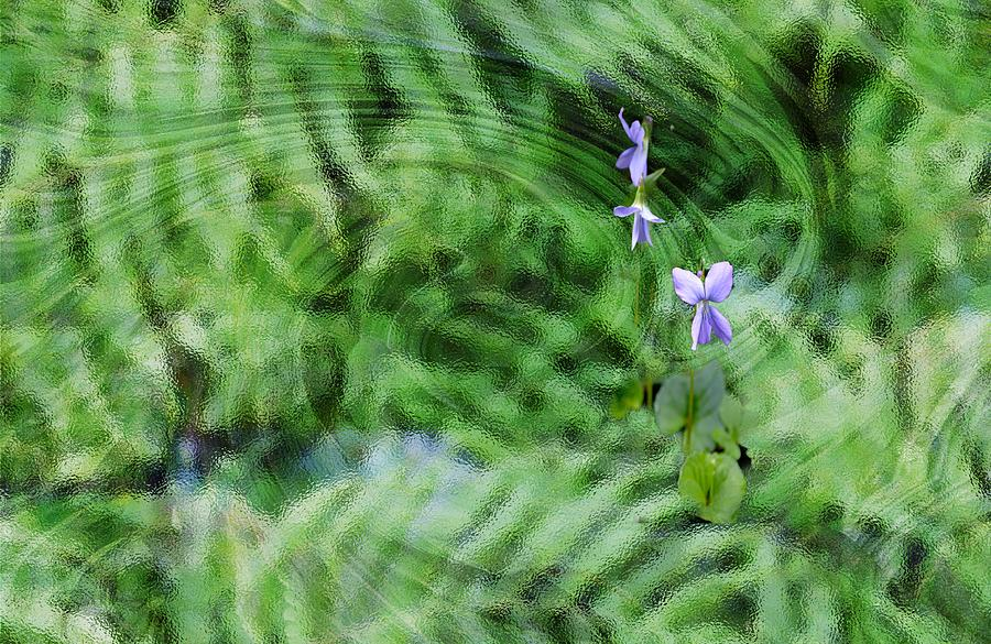 Green Abstract with Violets by Roy Erickson