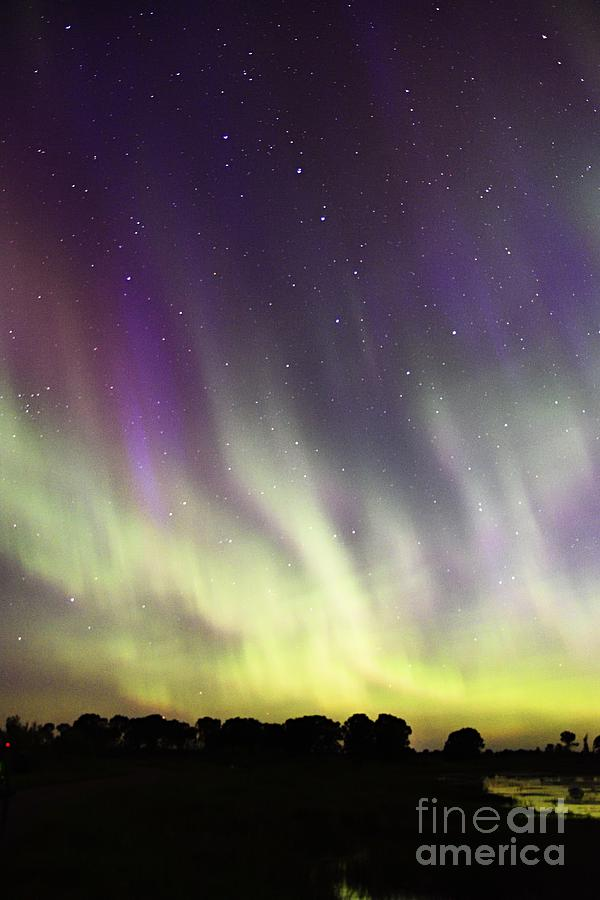 Green and Purple Fire in the Sky by Larry Ricker