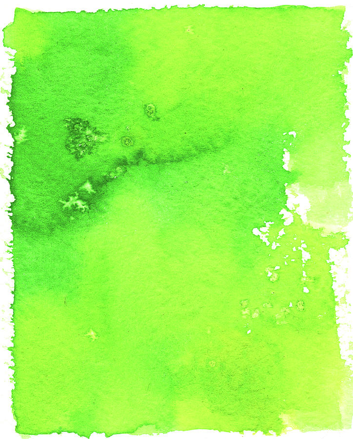 Green Background Spring Blend Digital Art by Taice