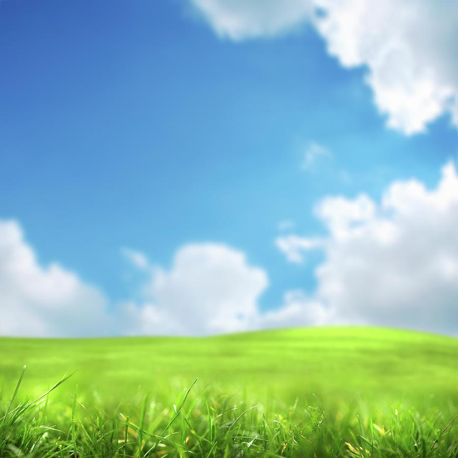 Green Field Photograph by Imagedepotpro