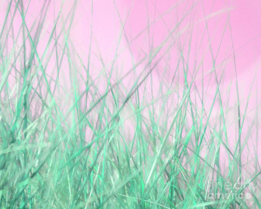 Green Grass Pink Sky 2 by Hal Halli
