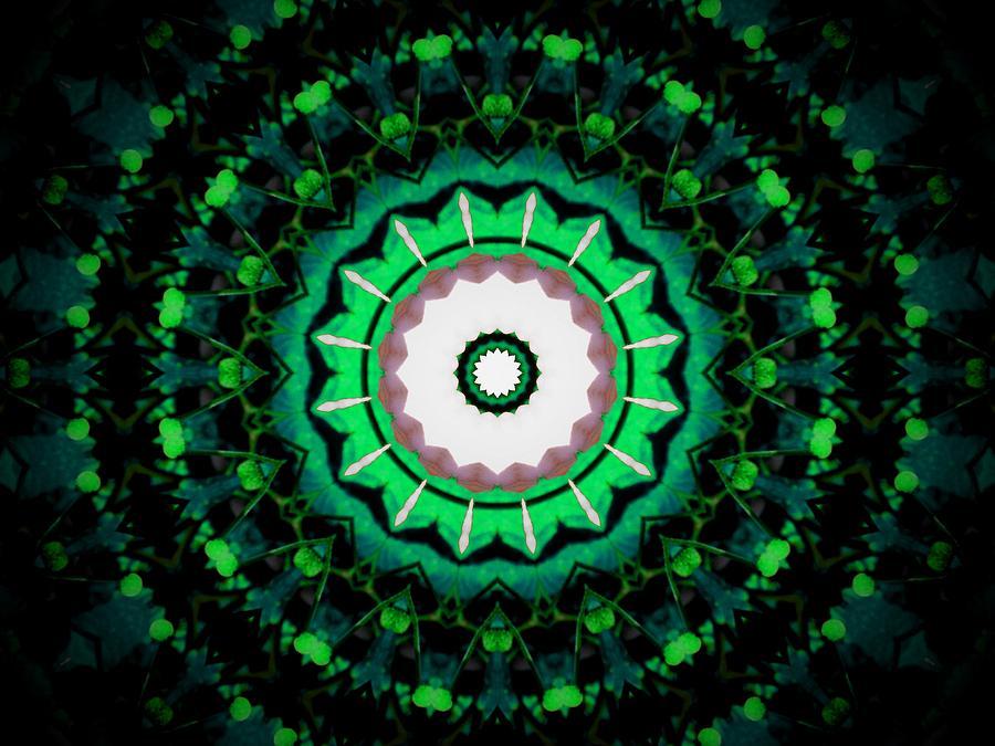 Green kaleidoscope by Patricia Piotrak