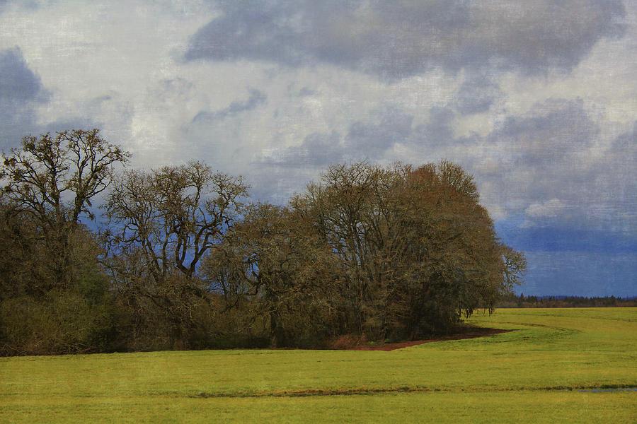 Green Photograph - Green landscape by Alina Avanesian