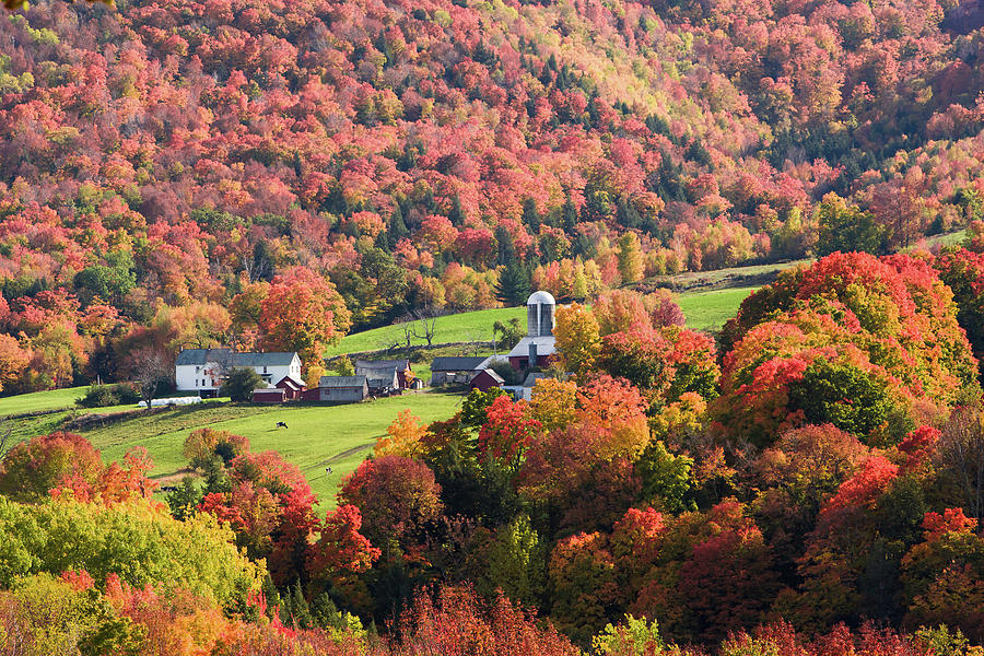 Green Mountain Farm in Fall Foliage by Jeff Folger