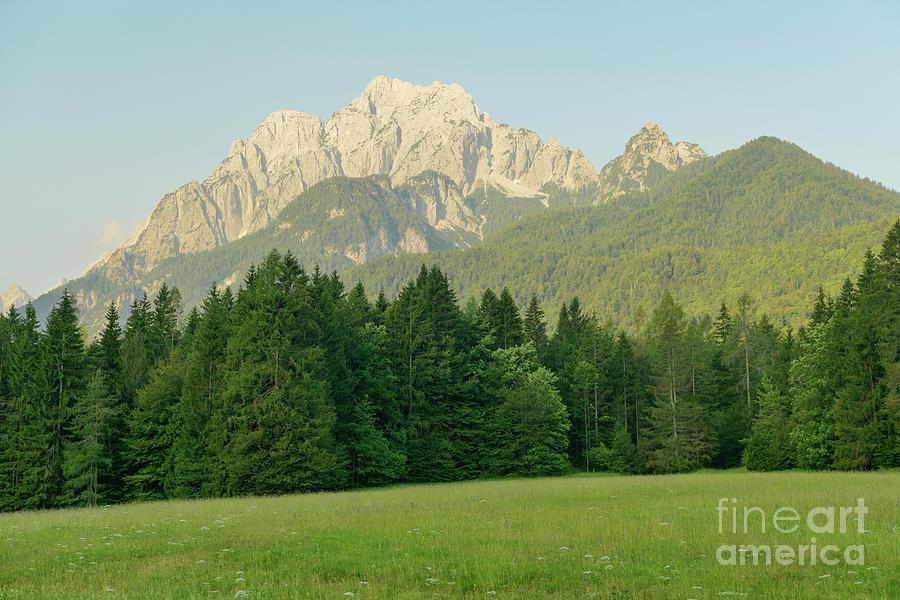 Green Mountain Landscape Photograph by David Nagy / 500px