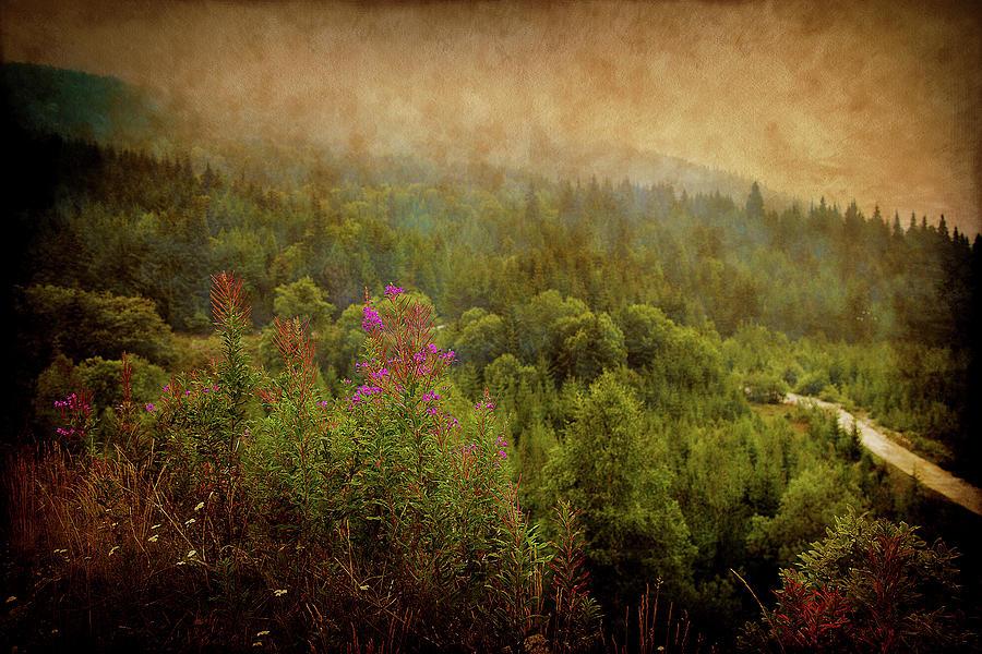 Green Mountains by Milena Ilieva