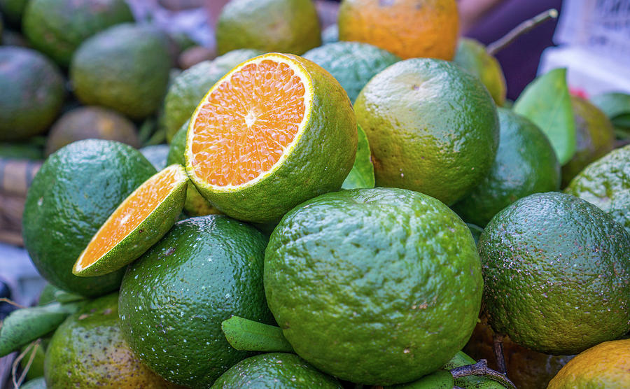 Green Oranges by Gary Gillette