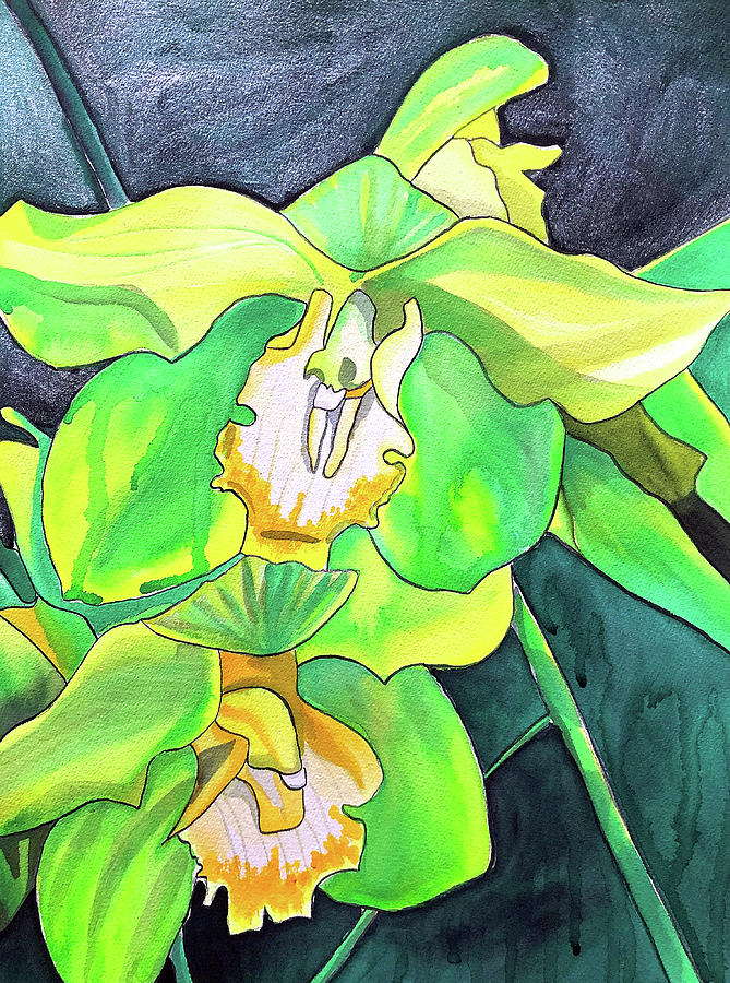 Flowers Painting - Green Orchids by Sacha Grossel