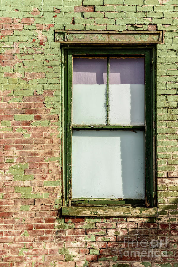 Green Painted Brick by Alana Ranney