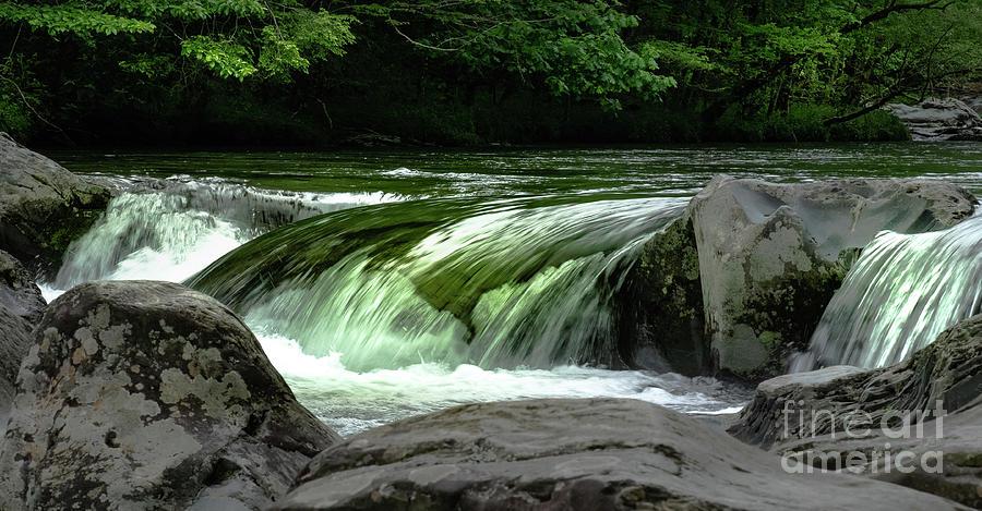 C.C.R.'s Green River by Rochelle Sjolseth