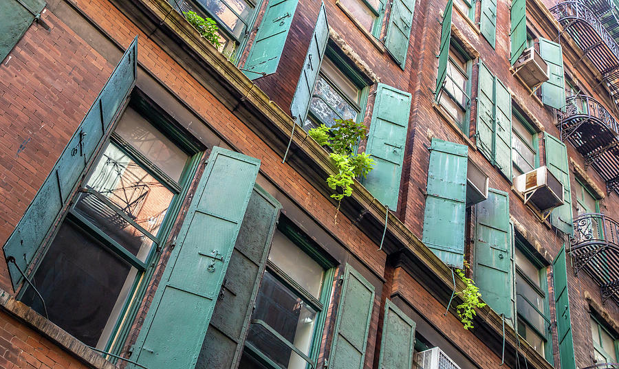 Green Shutters by Cate Franklyn