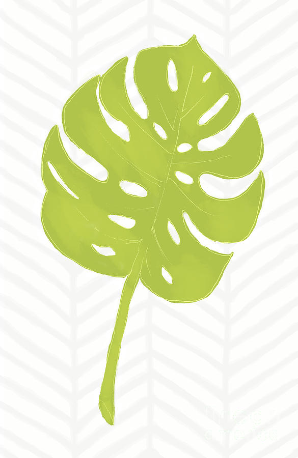 Green Tropical Monstera Leaf fresh geometry by Tina Lavoie