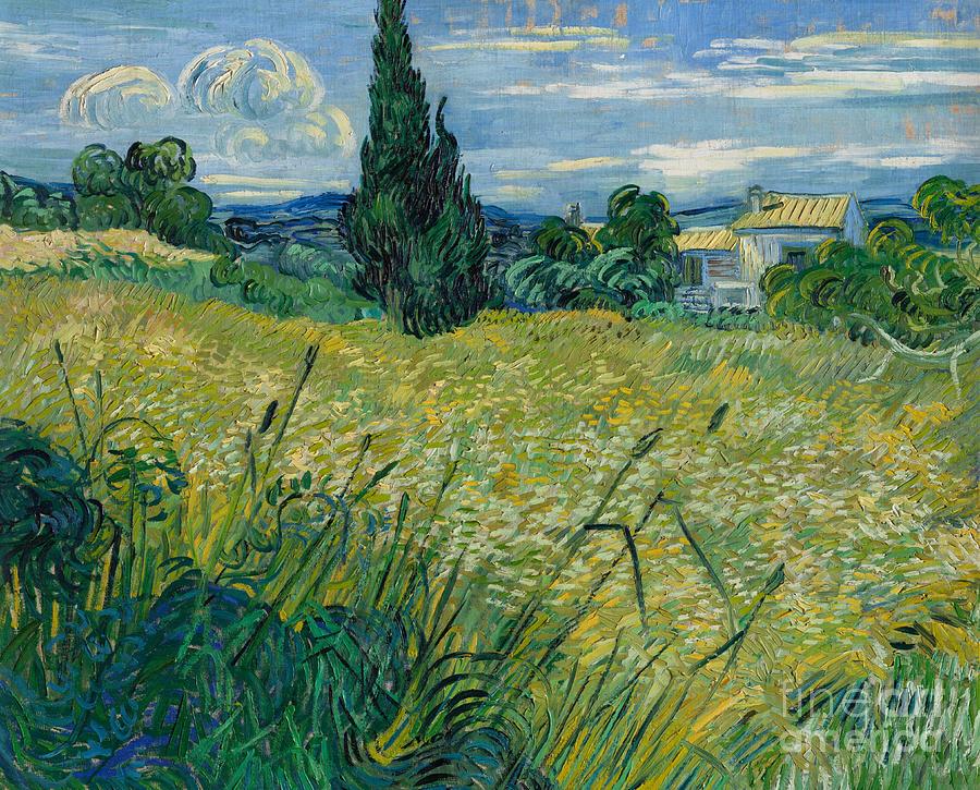 Van Painting - Green Wheat, 1889 by Vincent Van Gogh by Vincent Van Gogh