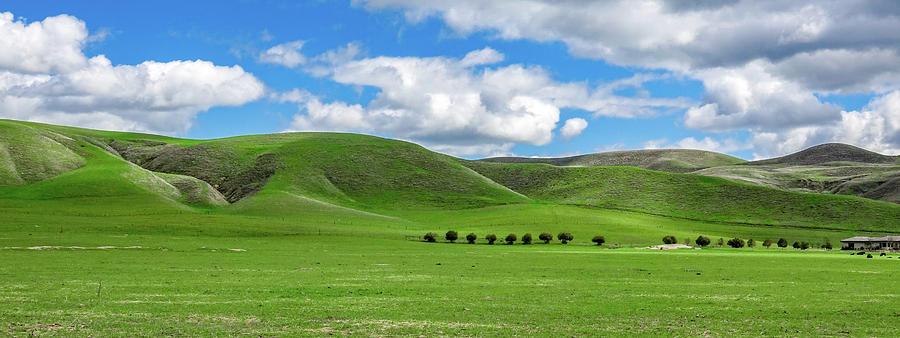 Greener Pastures Photograph by David A Litman