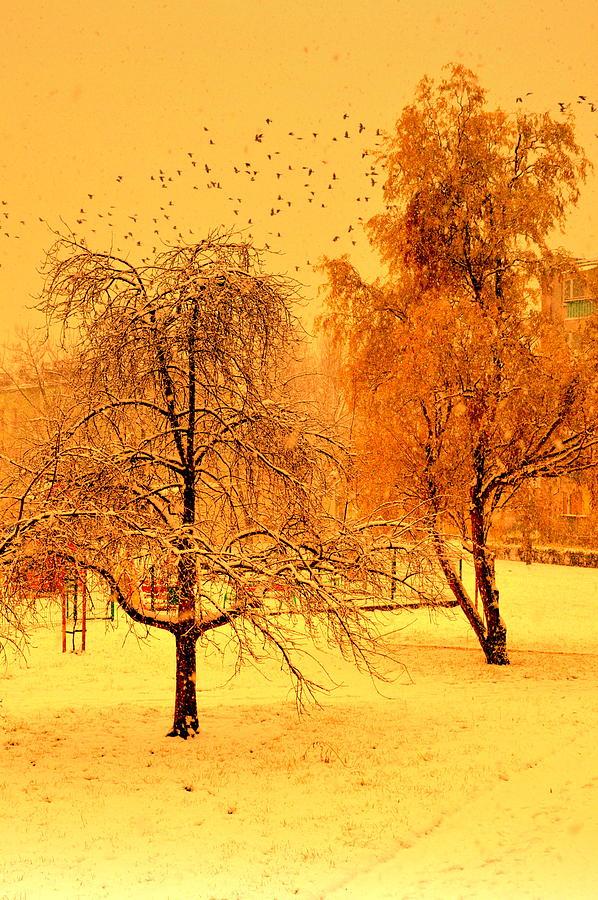 Greeting of Winter by Henryk Gorecki