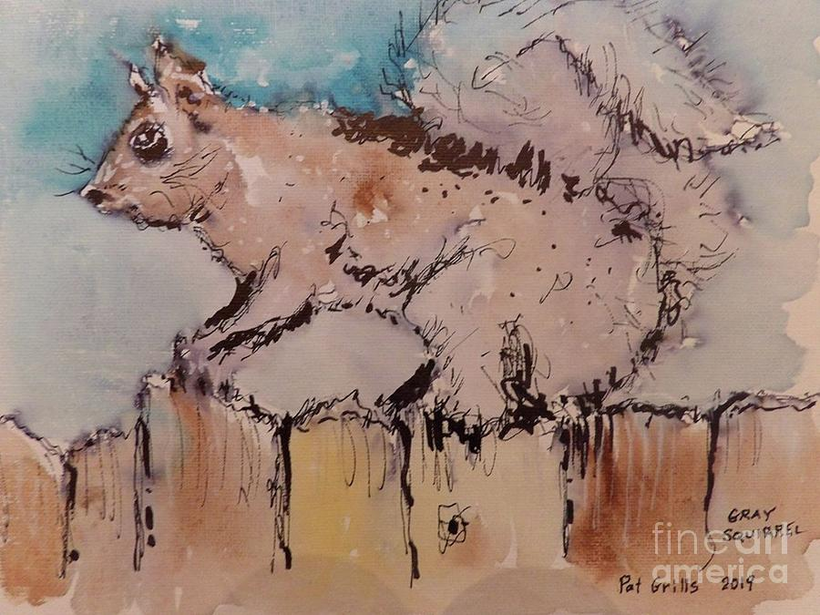 Grey Squirrel by Patrick Grills