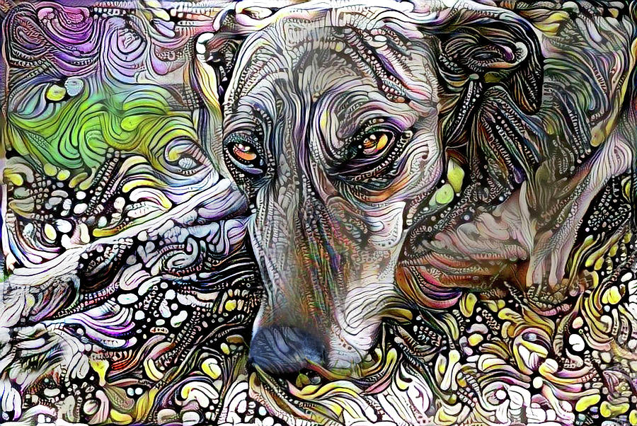 Greyhound Rescue Dog by Peggy Collins