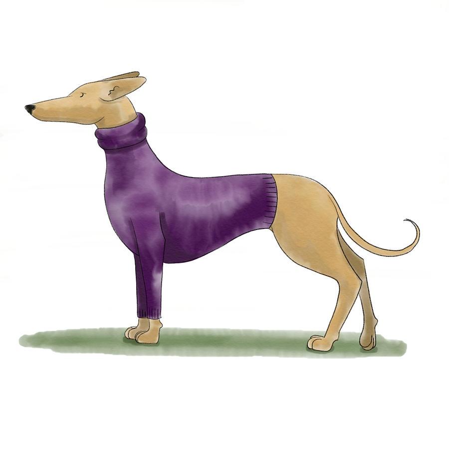 Greyhound Sweater Painting