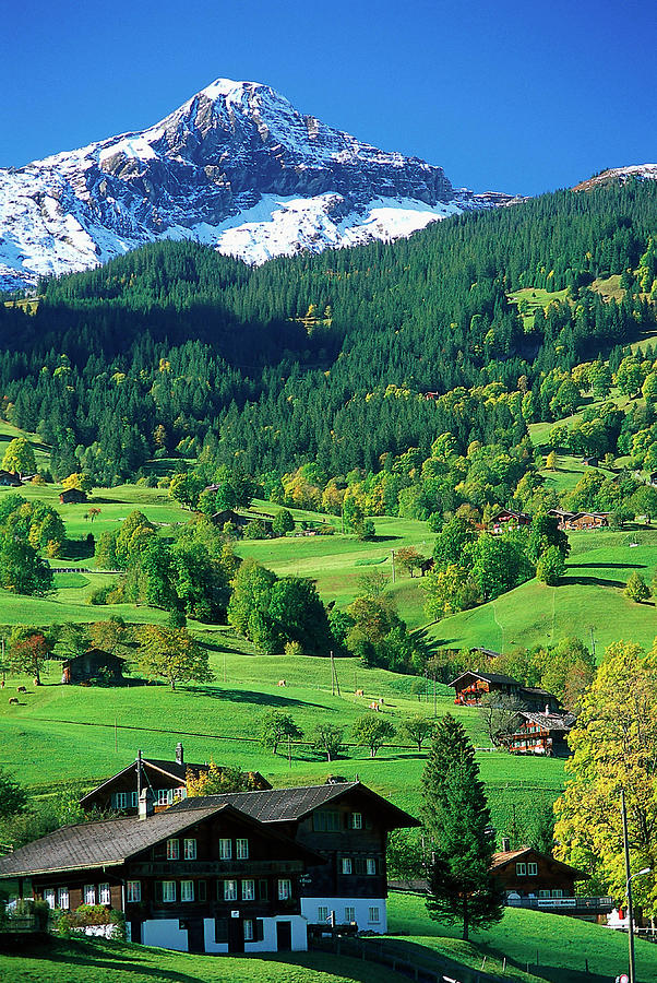 Grindewald, Switzerland Photograph by Peter Adams