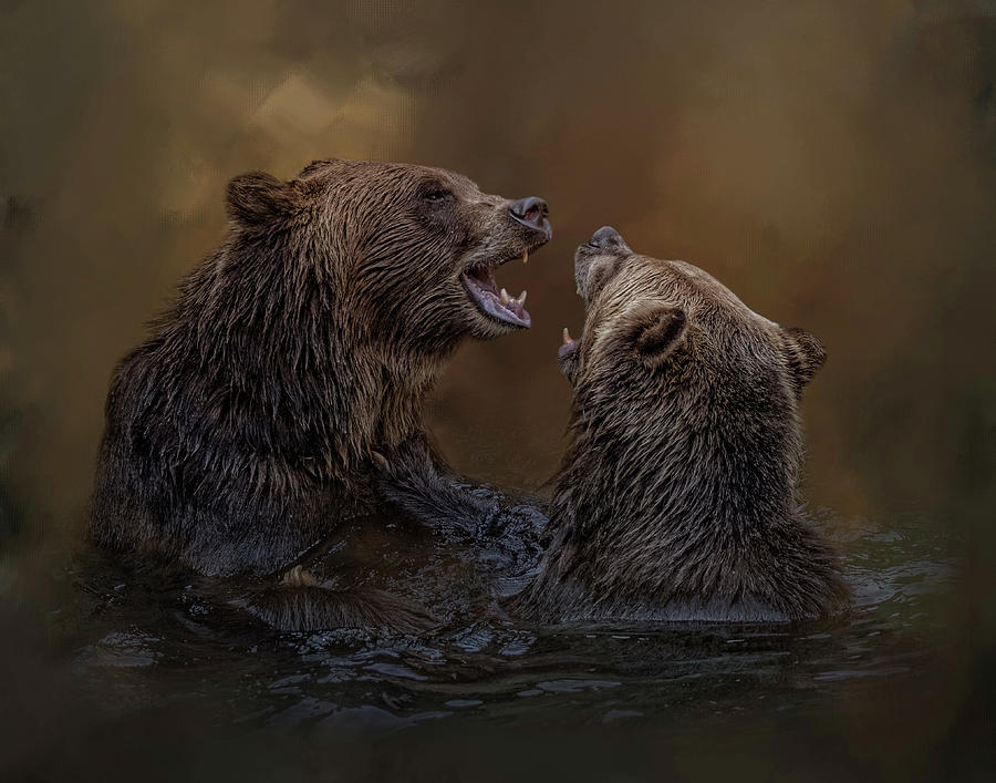 Grizzlies At Play by Kelley Parker
