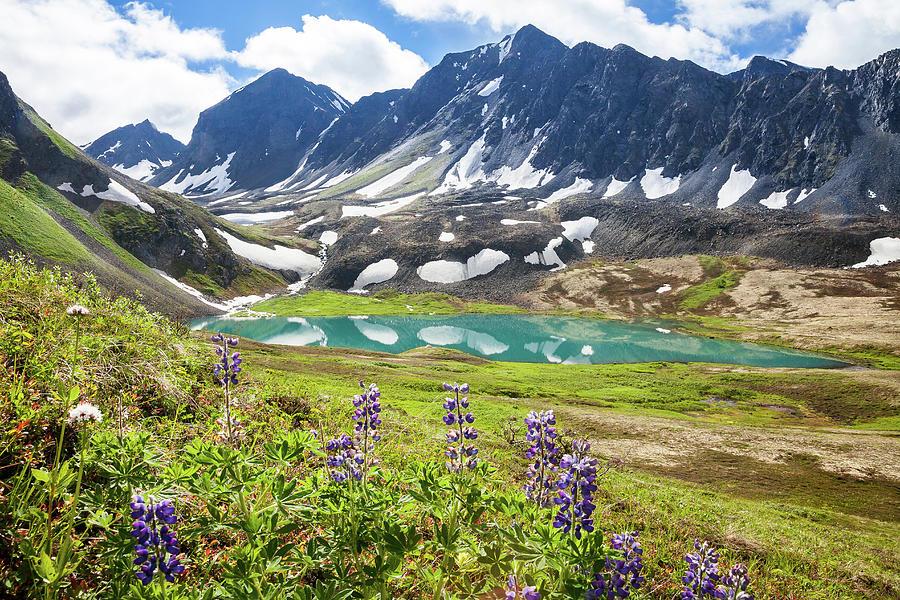 Alaska Photograph - Grizzly Bear Lake by Tim Newton