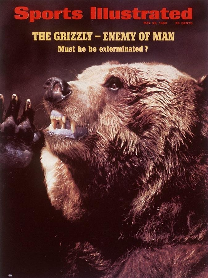 Grizzly Bear Sports Illustrated Cover Photograph by Sports Illustrated