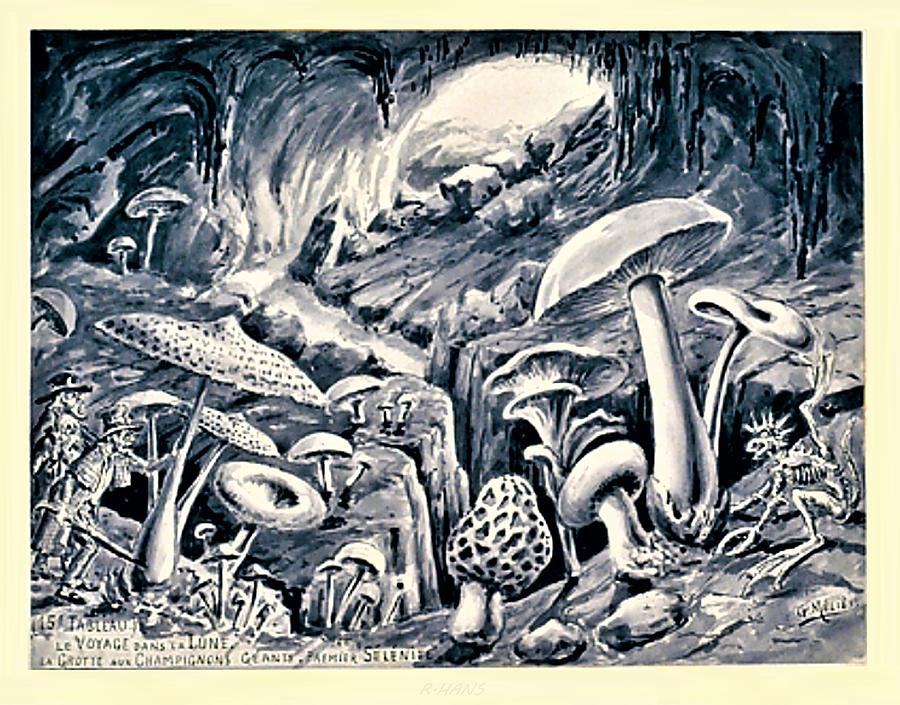 Grotto of Mushrooms on the Moon by Rob Hans