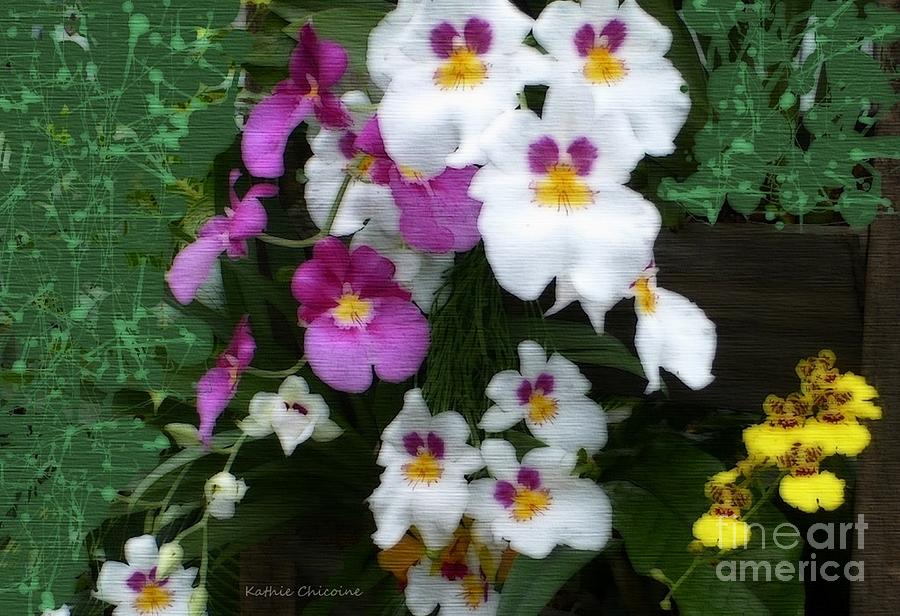 Groups of Orchids by Kathie Chicoine