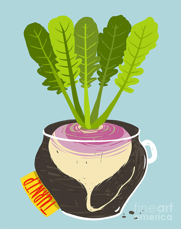 Container Digital Art - Growing Turnip With Green Leafy Top In by Popmarleo