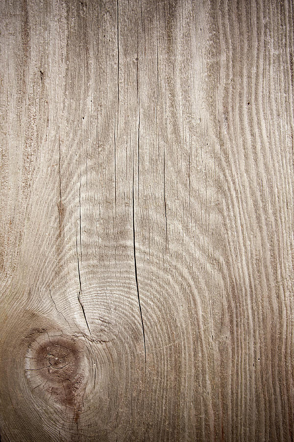 Grunge Wood Textured Background With Photograph by Hudiemm