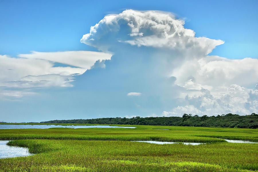 Guana Tolomato Marsh by Carol Eade