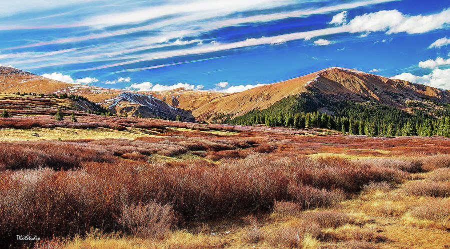 Guanella Pass Colors by Tim Kathka