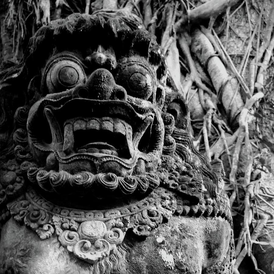 Guardian of the Monkey Forest BW by Melanie Maslaniec