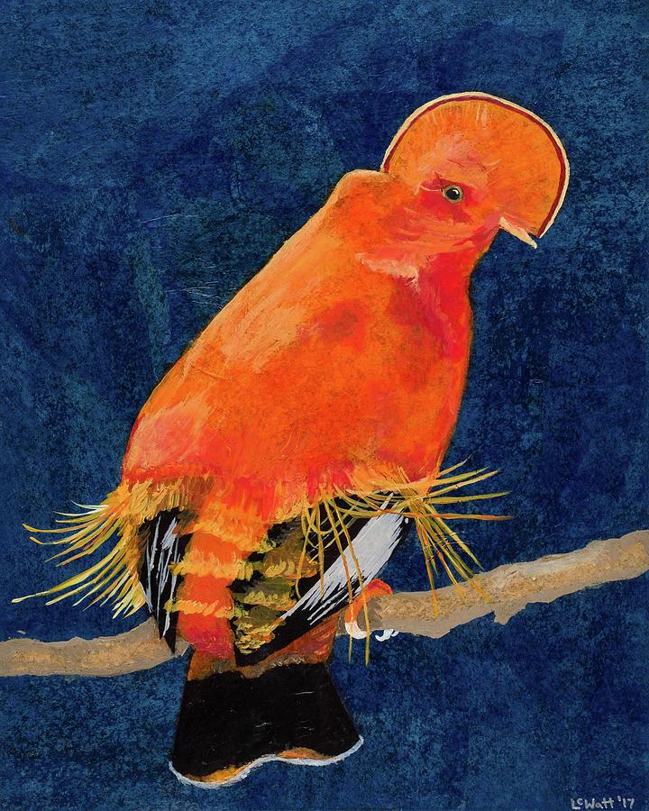 Guianan Cock of the Rock by Laelia Watt