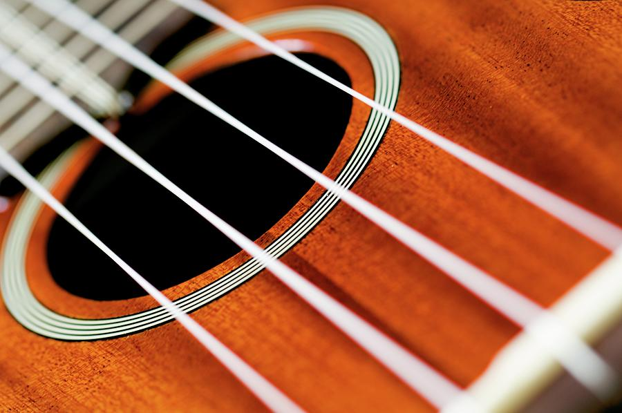 Guitar Photograph by Lee Scott