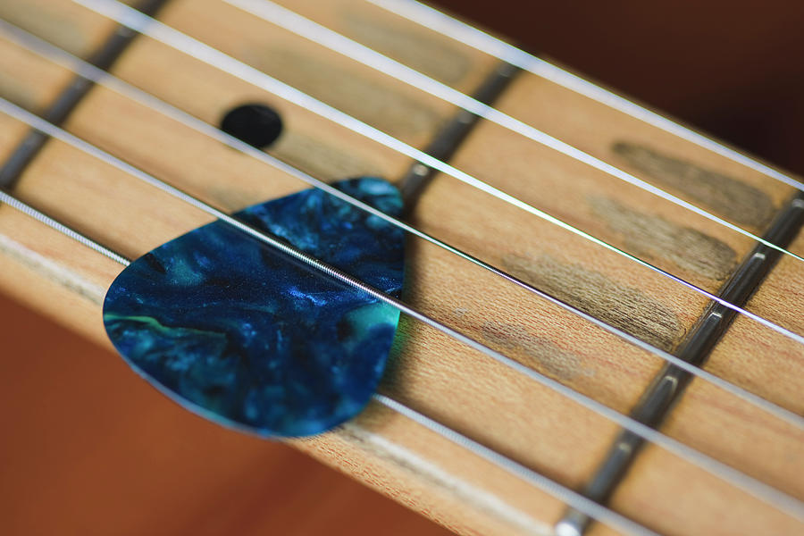 Guitar Strings And Plectrum Photograph by Fraser Hall